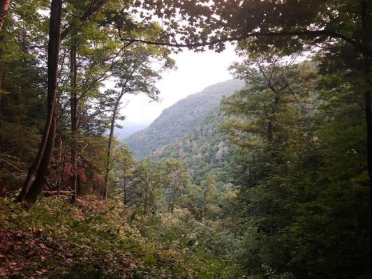 Thomas Cole Vista at Platt Clove added to Hudson River School Art Trail