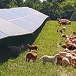 Renewable Energy_Greene County NY