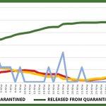 Website graph – June 11