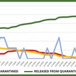 Website graph – June 4