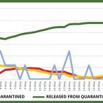 Website graph – June 8