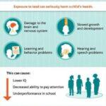 child-exposure-landing-pg-infographic-small